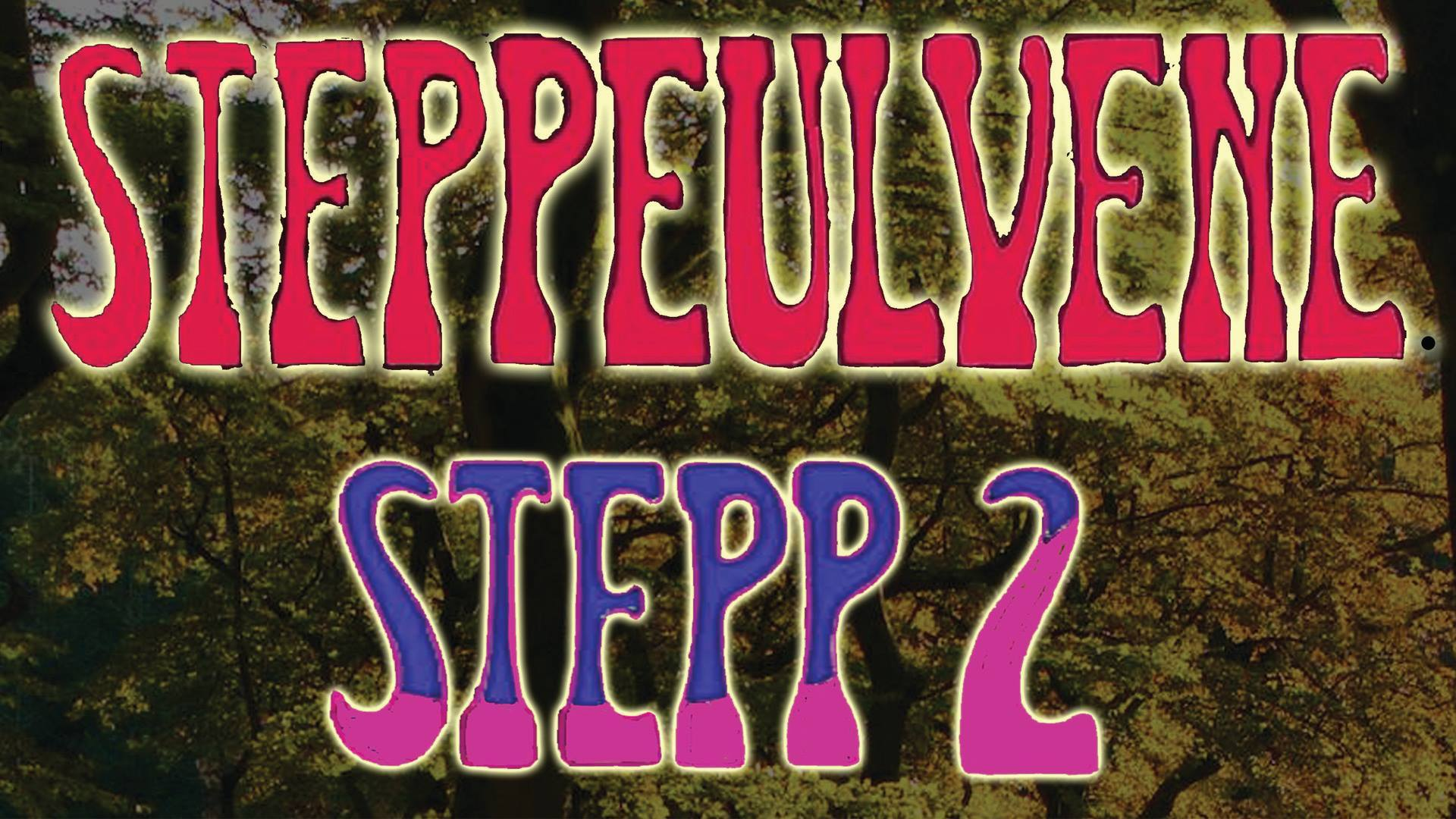 Harders - Stepp 2